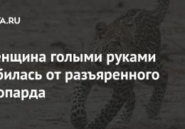 Женщина голыми руками отбилась от разъяренного леопарда