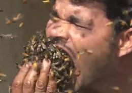 Индиец набил полный рот живыми пчелами