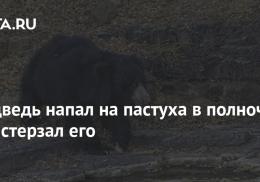 Медведь напал на пастуха в полночь и растерзал его