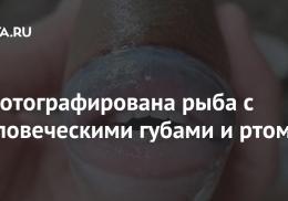 Сфотографирована рыба с человеческими губами и ртом