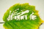 Борьба за сохранение окружающей среды