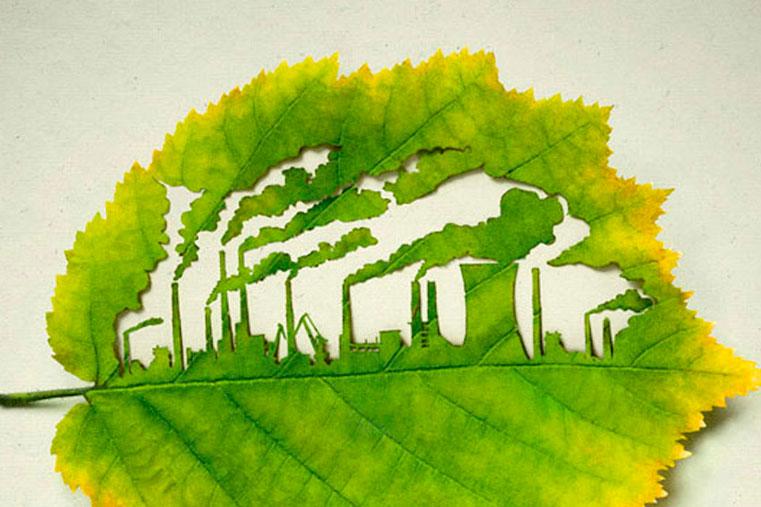 борьба за окружающую среду и экология