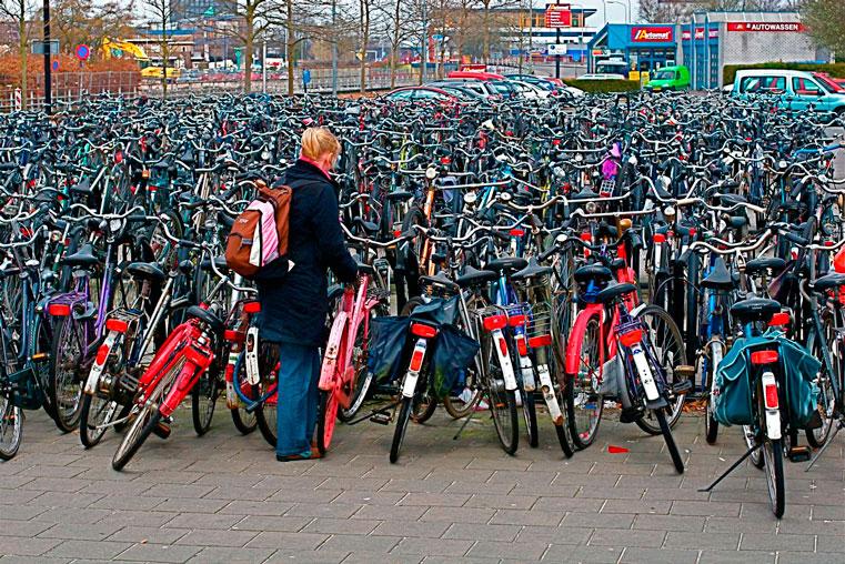 культ велосипеда в голландии
