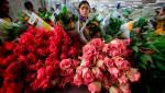 Предприниматели в России предпочитают цветочный бизнес