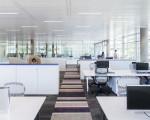 Учёные: продуктивность труда в офисе зависит от качества воздуха