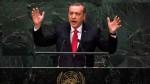 К началу саммита G20 Турция продемонстрировала, что она тоже борется с ИГИЛ