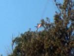 В Сирии разбился военный самолёт, принадлежавший России
