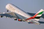 Авиакомпания Emirates временно прекратила выполнение полетов над Синайским полуостровом