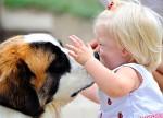 Собаки уменьшают вероятность возникновения астмы или аллергии у ребёнка