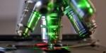 Новосибирские ученые смогли выработать механизмы для борьбы со СПИДом и раком