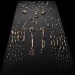 В Китае обнаружены останки скелета Homo habilis