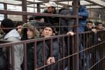 Российские регионы имеют возможность ограничить прием иностранцев на работу