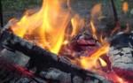 В Новой Москве сгорела частная баня и два её посетителя