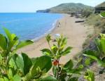 Уникальный крымский климат
