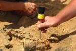 Археологическая находка сделана в ходе ремонта детской площадки в Британии