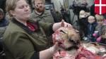 Датский зоопарк снова провёл вскрытие льва на публике