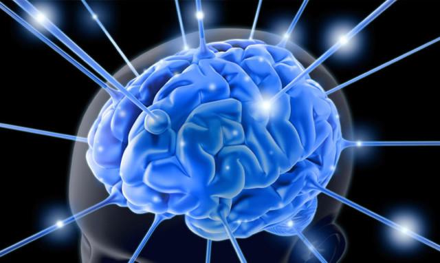 1373413834_mozg-cheloveka