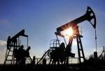 Российские нефтяные компании ведут активный диалог с Ираном