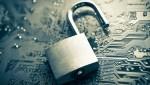 Австралийские компании открыты для киберпреступности
