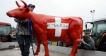 Швейцарские фермеры страдают от рекордного падения цен на молоко