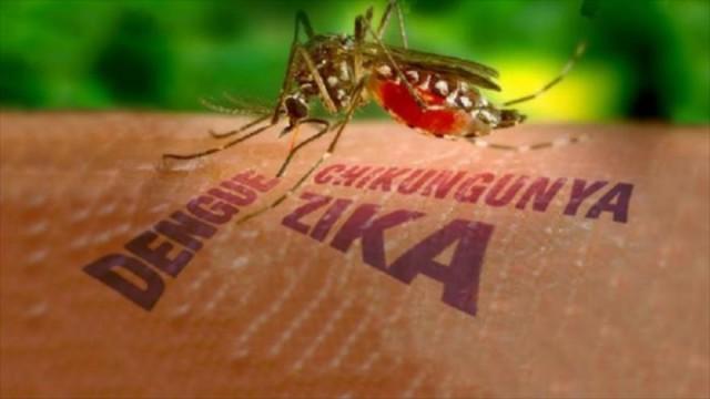 virus-zika-2