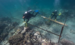 У берегов Омана обнаружили следы кораблекрушения XVI века