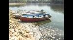 Загрязнение убивает тысячи рыб в индийском озере