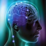 Учёные: способности мозга к запоминанию ограничены