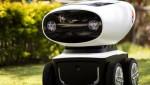 Роботы-доставщики пиццы могут появиться очень скоро