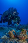 Криминалистика помогает определить ДНК с древнегреческого судна