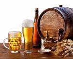 Учёные определили полезную дозировку пива