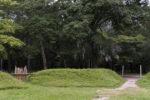 Археологи, возможно, нашли первое английское поселение в Америке