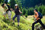 Костромская область ждёт любителей походной жизни