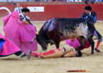 Поменялись ролями: В Испании впервые за 30 лет бык убил матадора