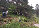 В Турции упал вертолёт: Погибли 7 человек
