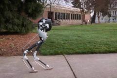 Двуногого робота без туловища показали на видео