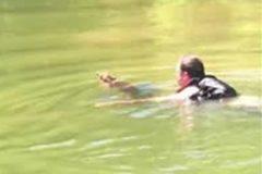 Американец спас тонущего в реке олененка