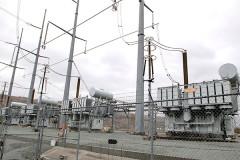 Белка оставила без электричества 45 тысяч человек в Калифорнии