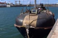 Поляк с кошкой семь месяцев дрейфовал по океану на сломанной шлюпке