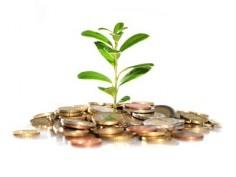 Сайт по мониторингу высокооплачиваемых инвестиционных программ