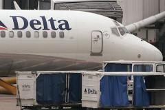 В багажном отделении самолета обнаружили мертвую собаку