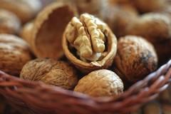 Твердолобый индиец поработал головой и расколол 217 орехов