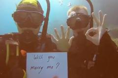 Австралиец сделал девушке предложение на Большом Барьерном рифе