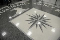 Женщина попыталась проникнуть в ЦРУ и поговорить с «агентом Пенис»