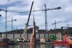 Подъем 75-тонной туши из моря сняли на видео