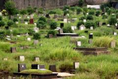 Скорбящий сын украл с кладбища тело матери