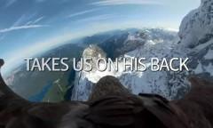 Орел пролетел с GoPro над Альпами и подтвердил опасения ученых