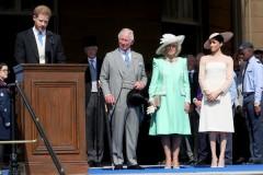 Принц Гарри и Меган Маркл останутся без денег