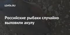 Российские рыбаки случайно выловили акулу