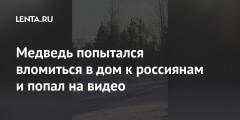 Медведь попытался вломиться в дом к россиянам и попал на видео